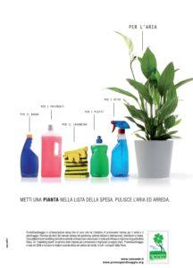 promogiardinaggio-piante-contro-linquinamento