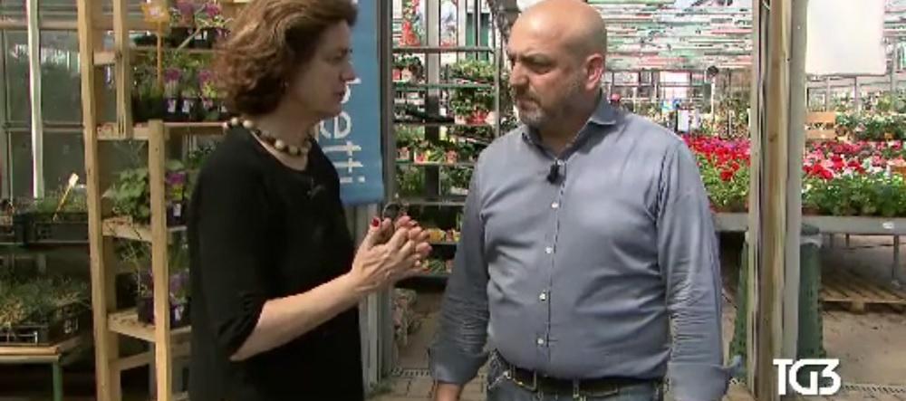 PROMOGIARDINAGGIO INTERVISTATA AL TG3: I CONSIGLI PER IL BONUS VERDE