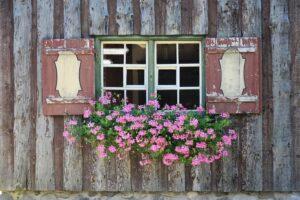 balcone fiorito in estate - Gerani ricadenti
