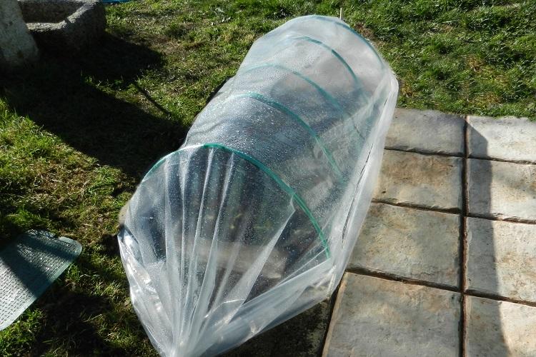 proteggere le piante dal gelo - Tunnel per orto